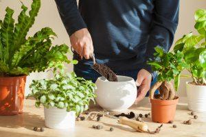 hombre-preparando-maceta-para-planta-de-hogar-sostenible-o-ecologico