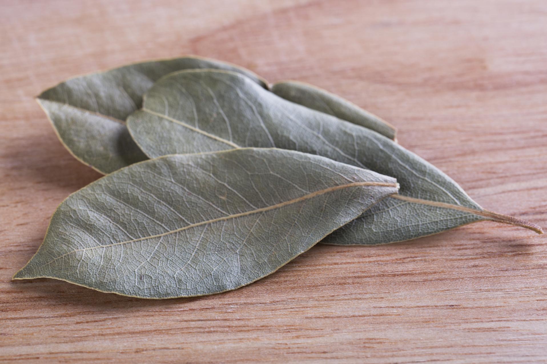 hojas-de-laurel-secas-para-cocina-natural-de-hogar-sostenible-o-ecologico
