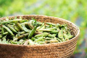 cesta-ecologica-con-guisantes-verdes-frescos