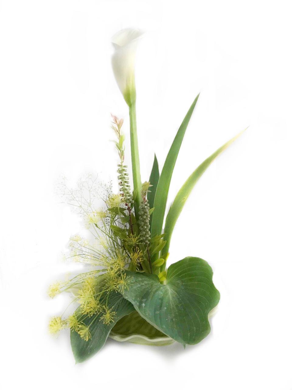 ikebana-flor-blanca