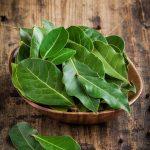 pequeña-bandeja-de-madera-de-zebrano-conteniendo-hojas-laurel