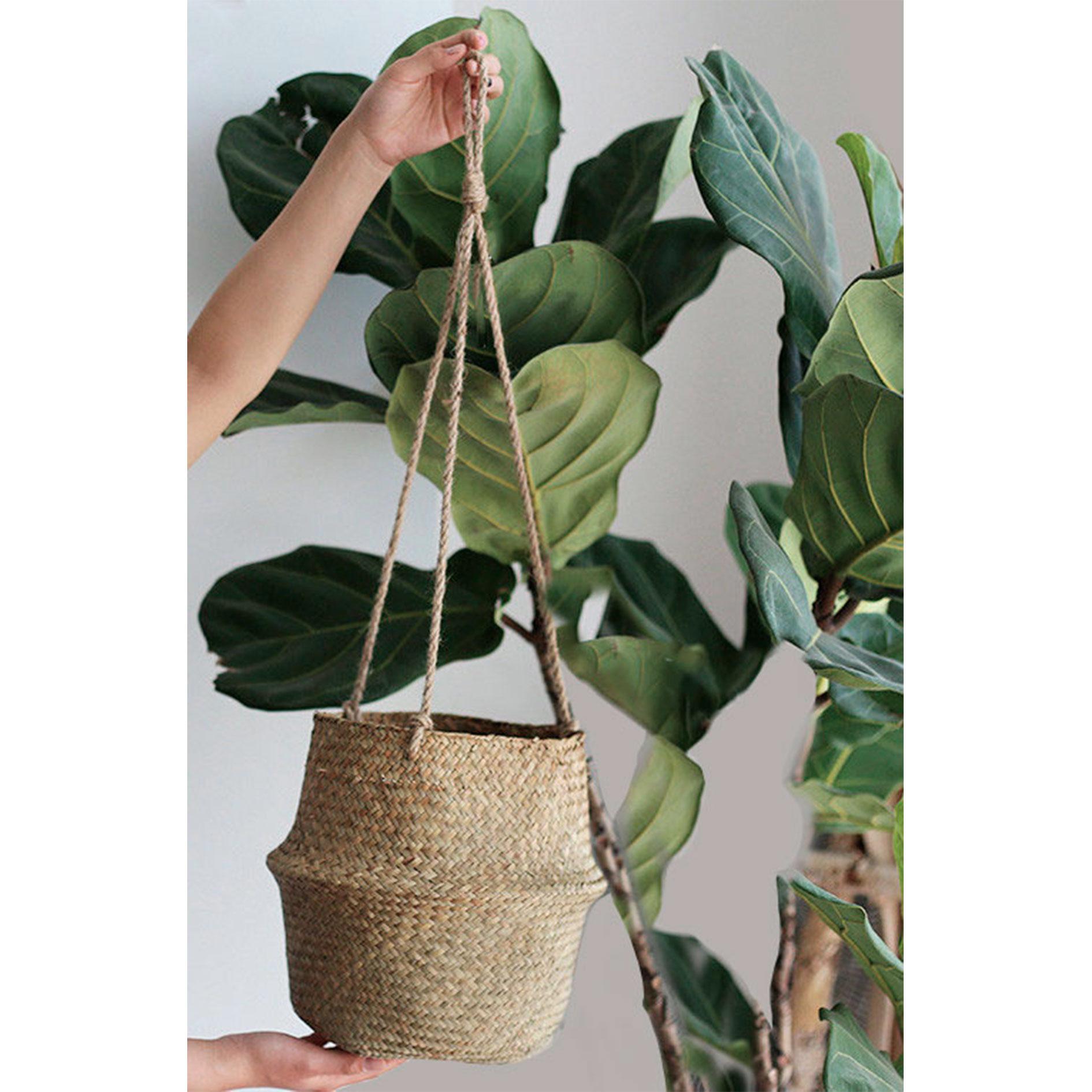 cesta-con-cuerdas-para-plantas-papua